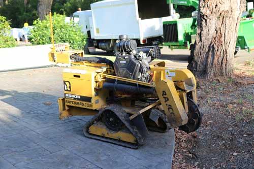 stump grinding sutherland shire