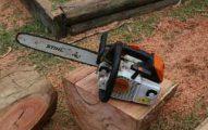 Sydney-Tree-Removal-Contractors